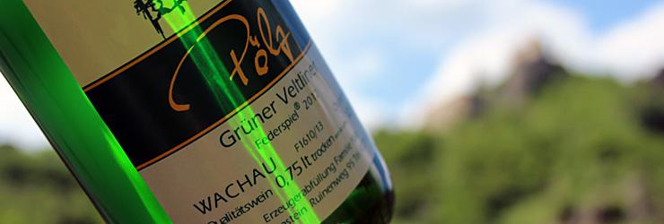 Weinbau Pölz